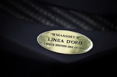Mansory-Bugatti-Veyron-dOro-19.JPG