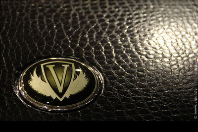 Vipon-Leather-BMW-emblem.jpg